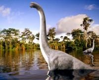 Çin'in doğusundaki Cıciang eyaletinde yeni dinozor türü keşfedildiği duyuruldu.