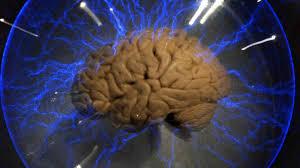 Beynin haritası çıkarılacak