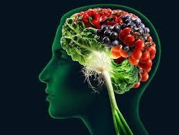 Kokain beynin yapısını değiştiriyor