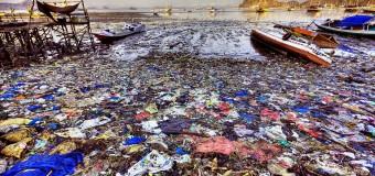 'Plastik atıklar sanılandan fazla'