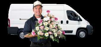 Çiçek gönderiminin yeni adresi:Çicek Vitrini