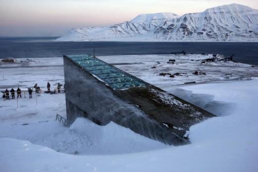 Svalbard-tohum-alanıi