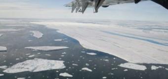 Serin yaz, Kuzey Buz Denizi'ne yaradı