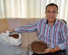 Çay atıklarından tekstil boyası üretildi
