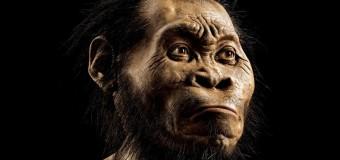 Nesli tükenmiş yeni bir insan türü keşfedildi