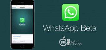 WhatsApp Beta kullanıcı programını başlatıyor