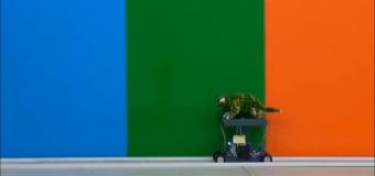 Çin'liler aştı! Bukalemun robot yaptılar