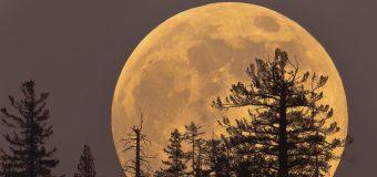 Yüzyılın en büyük Süper Ay'ı 14 Kasım'da