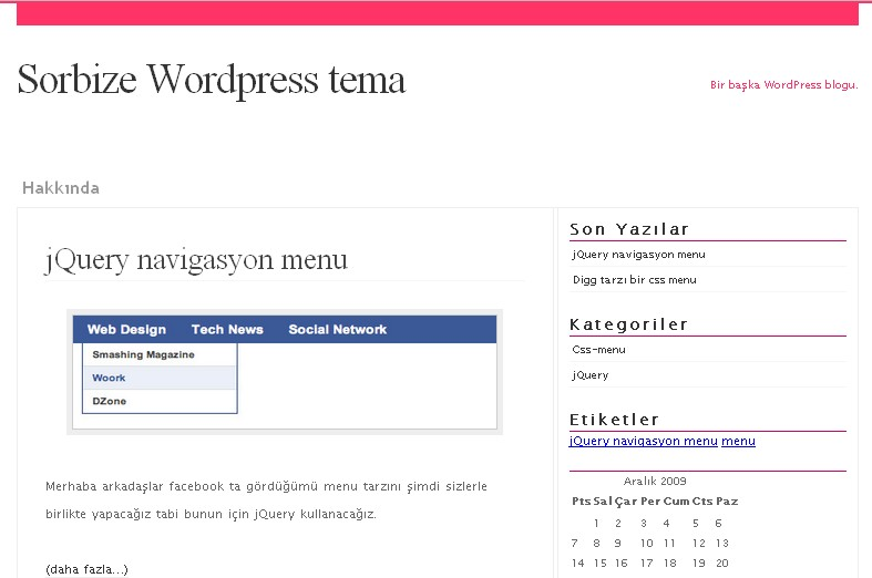 wordpress-tema-yapimi-1