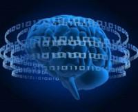 Türkçe'de beyin 2 kez çalışıyor