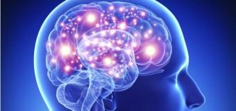 Parkinson'da 'çığır açan' kök hücre buluşu