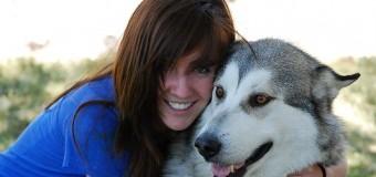 Köpek eğitimi neden gereklidir?