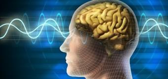 Uzaktan beyin kontrolü gerçek oldu!