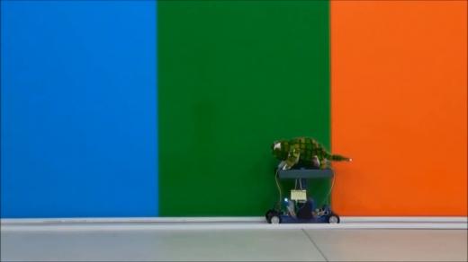 bukelemun-robot